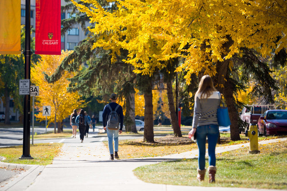 Students walking on the University of Calgary campus